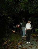 Night hike @ El Yunque National Forest - Photo by Lynette P�rez