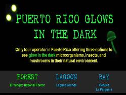 Puerto Rico Glows in the Dark